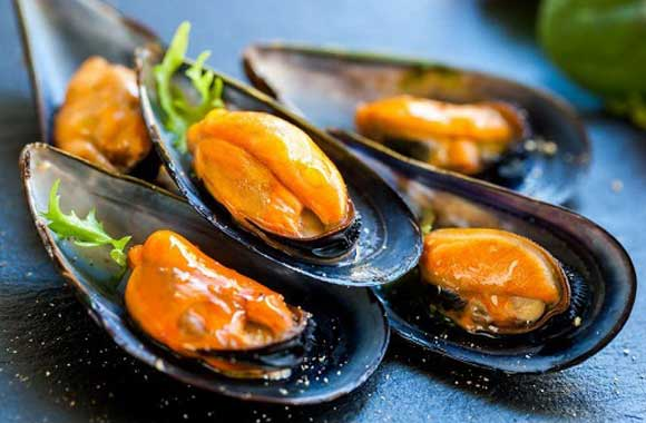 Sea-Shell-Mussels